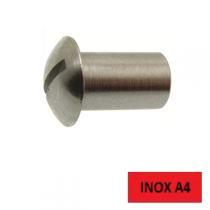 Ecrou hublot femelle Inox A4 4 x 12 BTE 100 (Prix à l'unité)