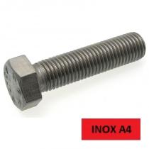 Blister 5 vis TH inox A4 8x50